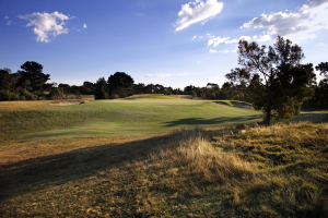Curlewis Hole 4